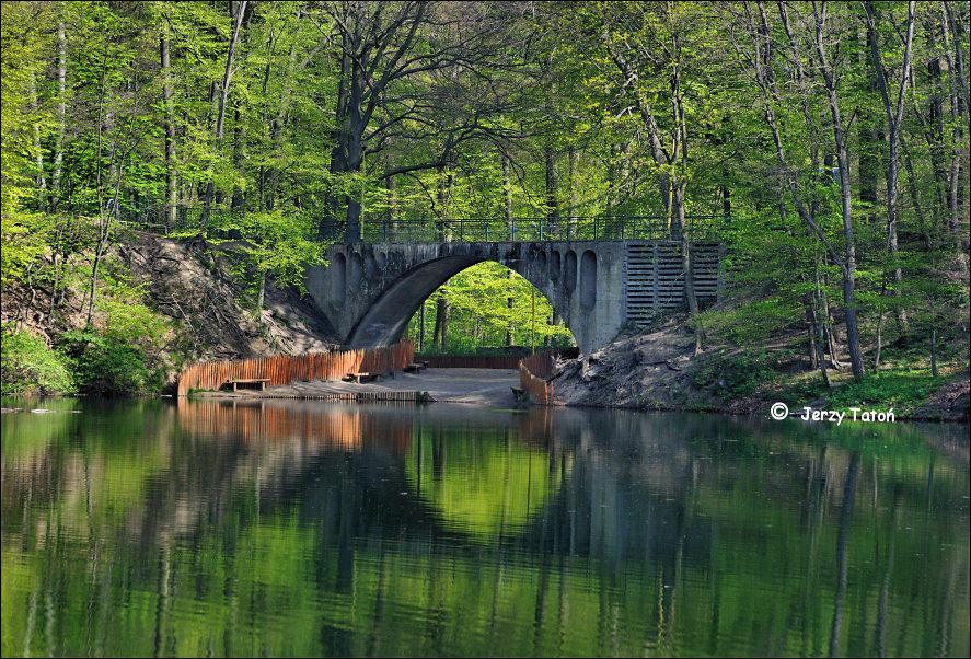 ... - Jezioro Szmaragdowe - Puszcza Bukowa - zdjęcia - foto: www.jerzytaton.pl/inne/sciezki/pages/szczecin_zdroje-jezioro...